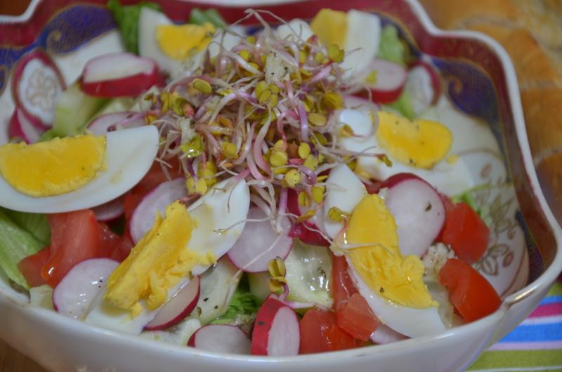 salata powiew wiosny